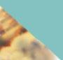 Sand Tortoise/Cyan