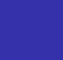 Dodger Blue Rosebud