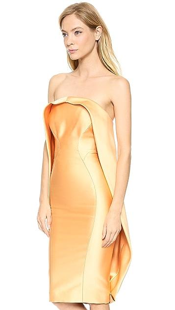 Zac Posen Duchesse Strapless Dress