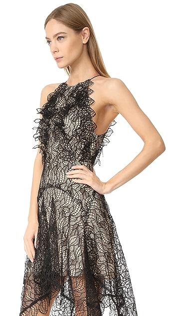 Acler Burton Lace Dress