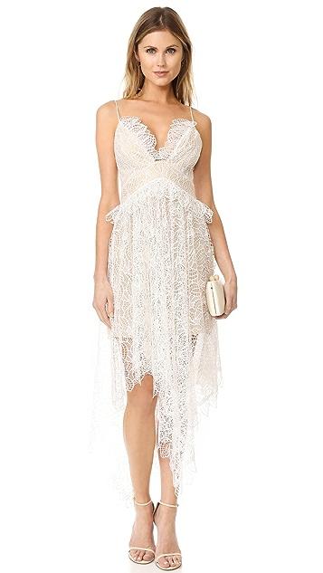 Acler Elane Lace Dress