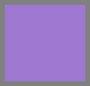 Violet Purple
