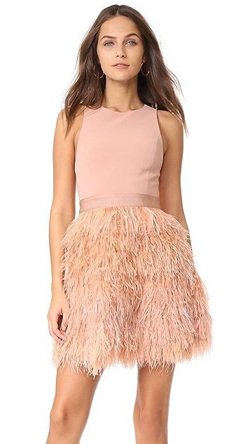 alice + olivia Philomena Feather Dress