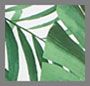 Tropical Leaves/Soft White