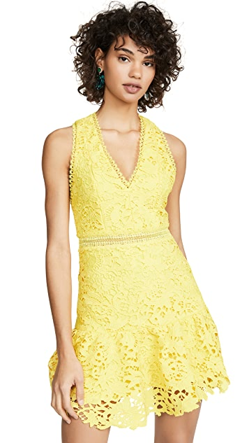 alice + olivia Marleen Gathered Fit Flare Dress