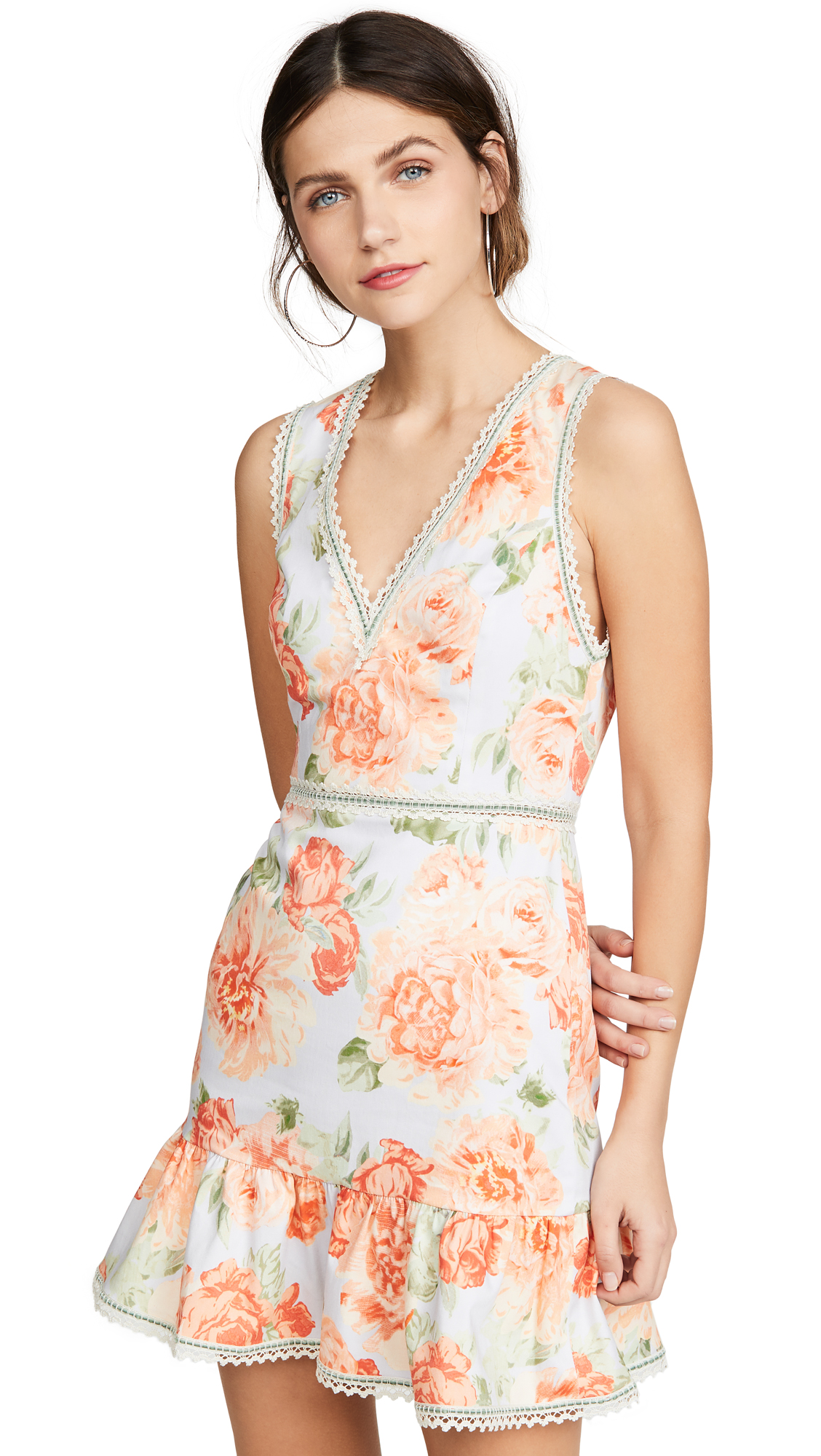alice + olivia Kirean V Neck Dress - Posy Garden Dusty Orchid/Multi