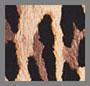 Spotted Leopard Dark Tan