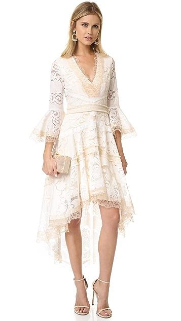 Alexis Ash Dress