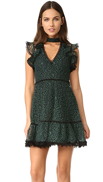 Alexis Lilly Dress