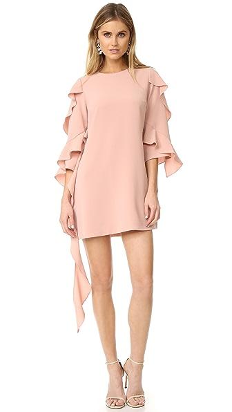 Alexis Sofie Dress