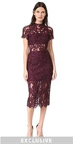 Leona Lace Dress Alexis