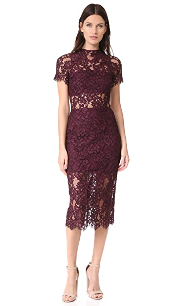 Alexis Leona Lace Dress In Plum