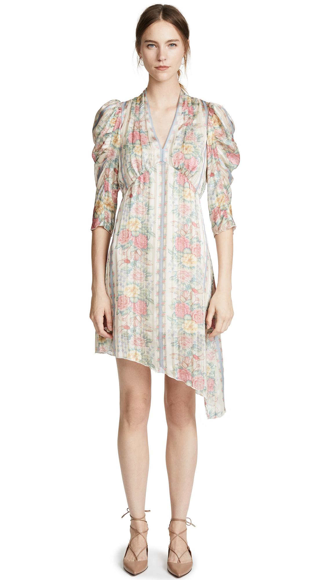 Anna Sui Whisper Rose Dress