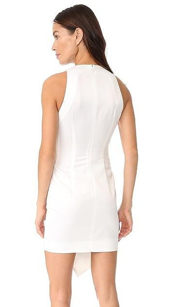 AQ/AQ Peyton Sleeveless Mini Dress