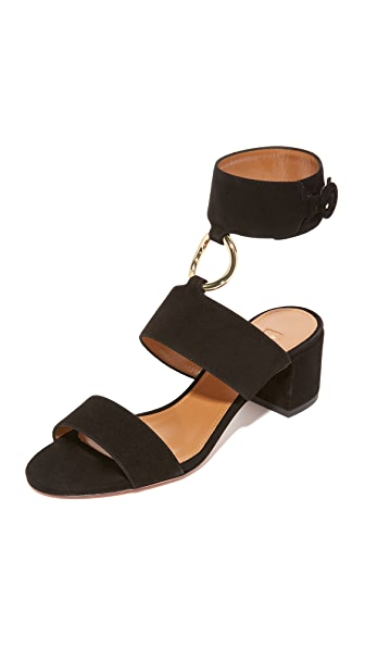 Aquazzura Safari City Sandals - Black