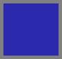 Aquazzura Blue