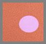 Terra 圆点