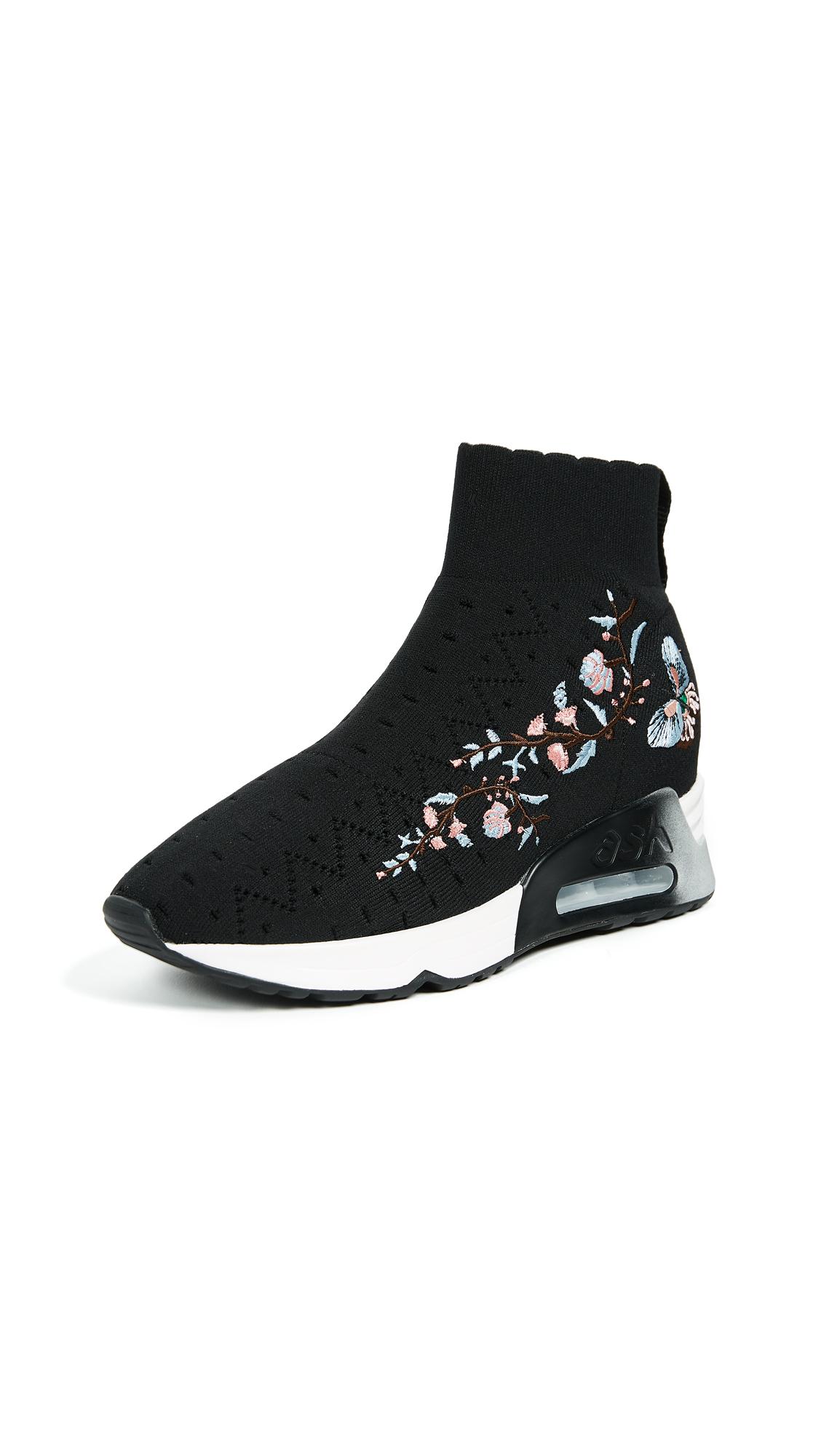 Ash Lotus Knit Joggers - Black