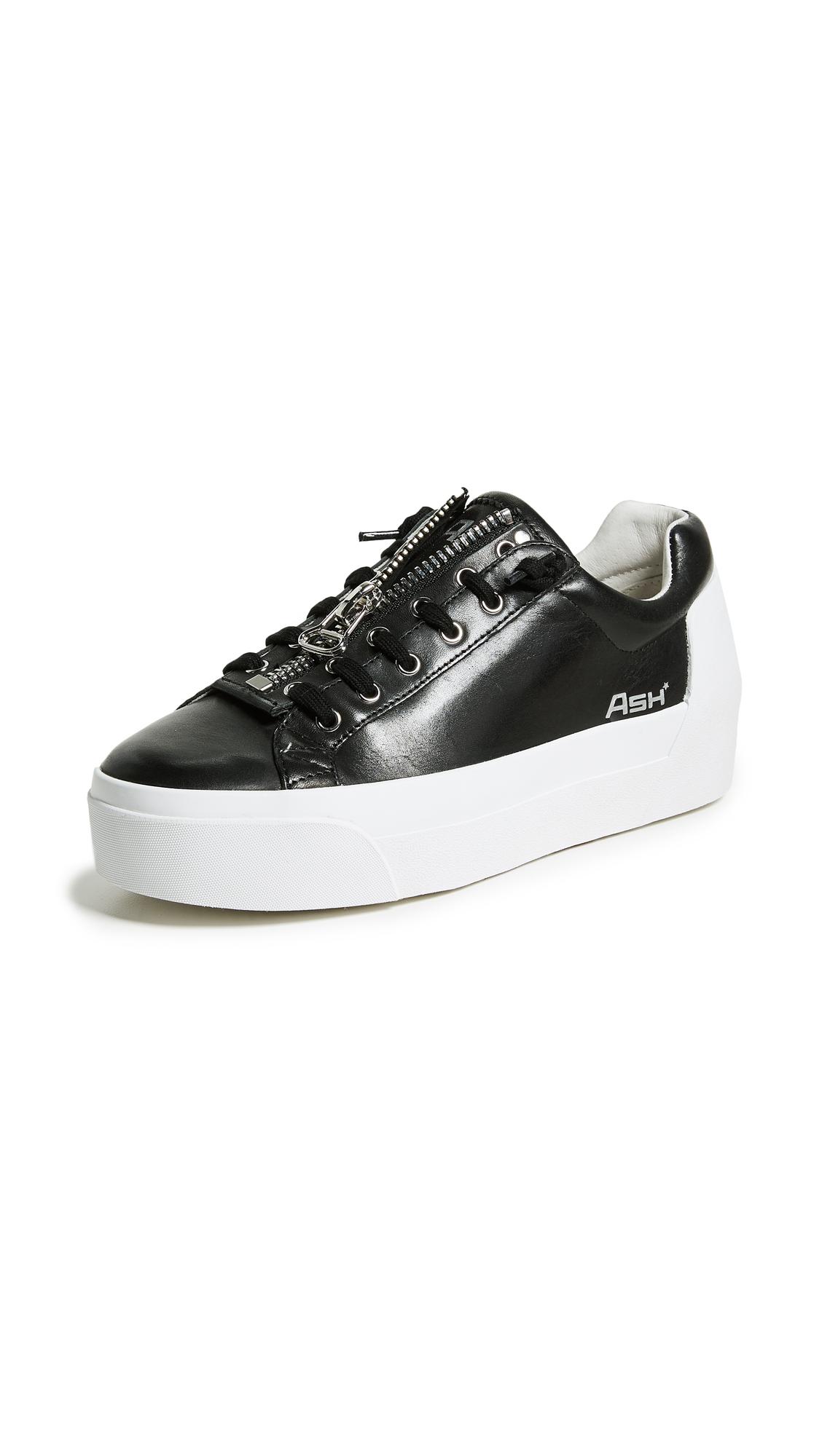 Ash Buzz Platform Sneakers - Black