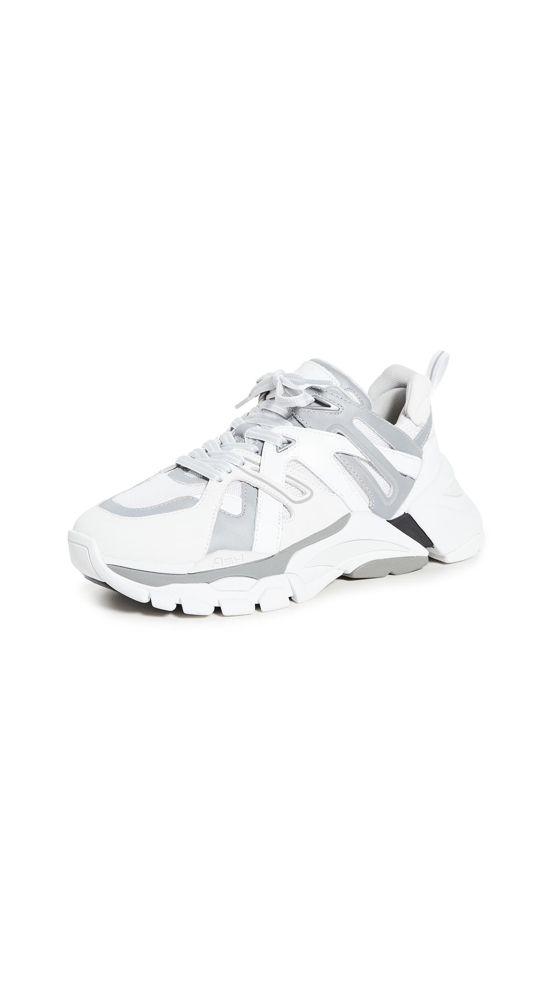 Buy Ash Flash Sneakers online, shop Ash