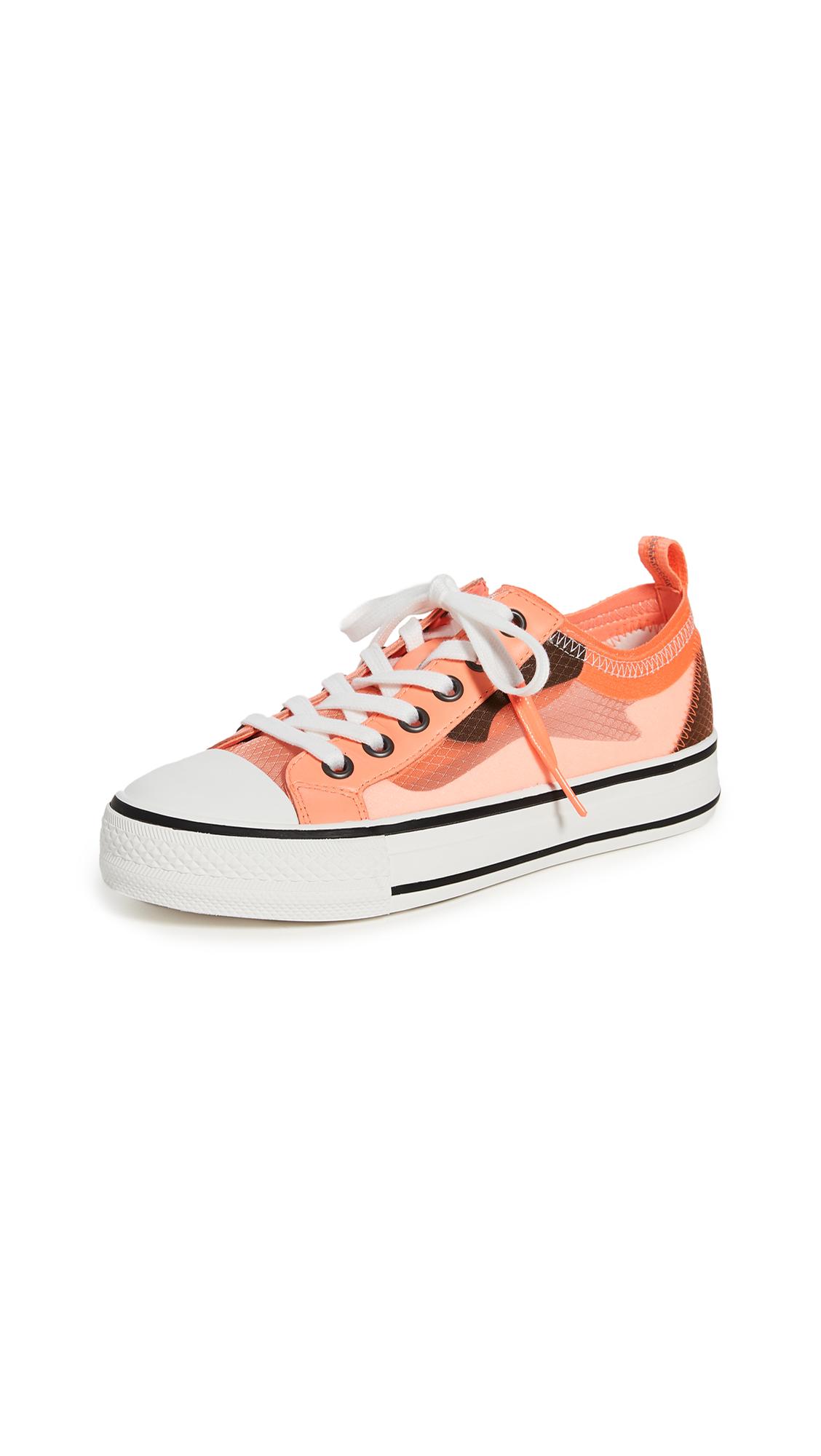 Buy Ash Vertu Sneakers online, shop Ash