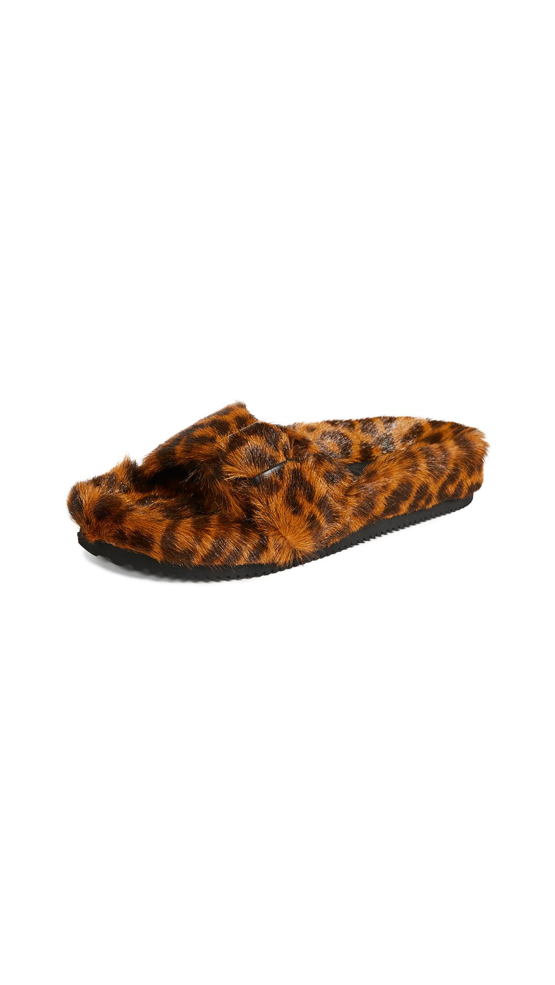Alexander Wang Bee Slides - Leopard