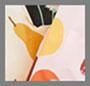 Pear/Wildflower/Autumn Fruit