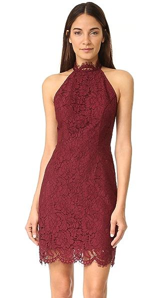 BB Dakota Cara High Neck Lace Dress - Aubergine