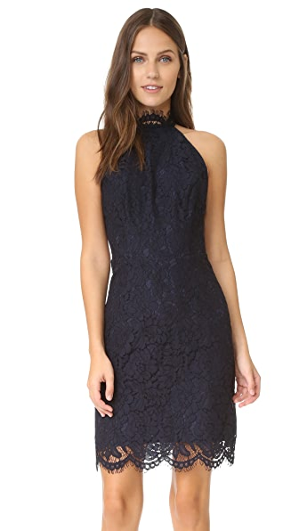 BB Dakota Cara High Neck Lace Dress