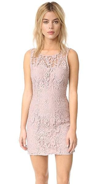 BB Dakota Thessaly Sleeveless Lace Dress - Champagne