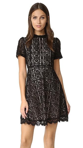 BB Dakota Adelina Mock Neck Lace Dress - Black