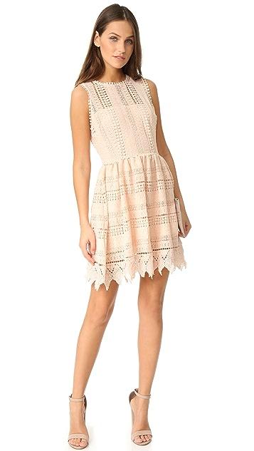 BB Dakota Elissa Crochet Lace Dress