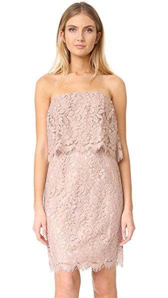 BB Dakota R.S.V.P by BB Dakota Sakura Strapless Lace Dress - Blush