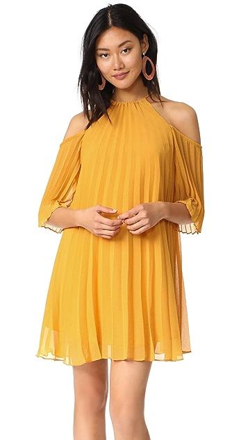 BB Dakota Gretel Pleated Dress