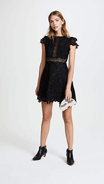 BB Dakota Calvin Scalloped Lace Dress