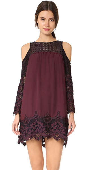 BB Dakota Jacky Two Tone Lace Dress - Fig