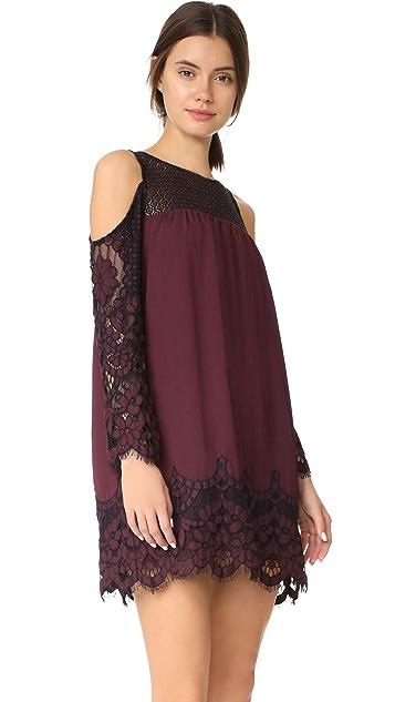 BB Dakota Jacky Two Tone Lace Dress