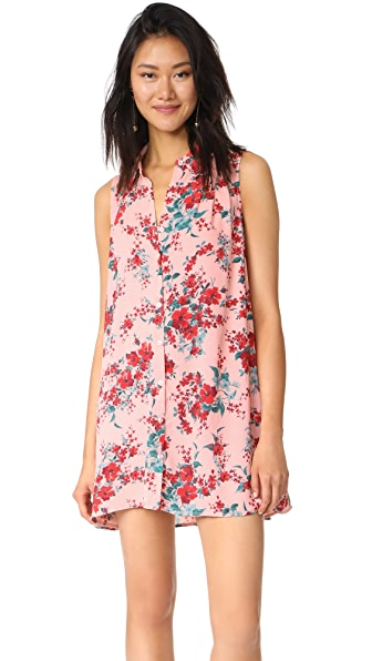 BB Dakota Jack by BB Dakota Armand Dress - Rose Dawn