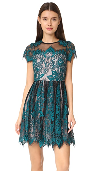 BB Dakota R.S.V.P by BB Dakota Cordelia Lace Dress