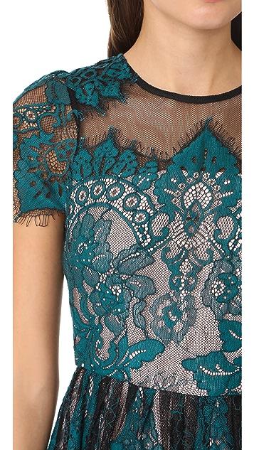BB Dakota R.S.V.P by BB Dakota Cordelia Lace Dress