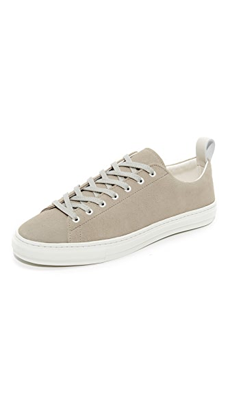 buddy Bull Terrier Low Suede Sneakers