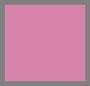 Desert Berry/Blush Blooms