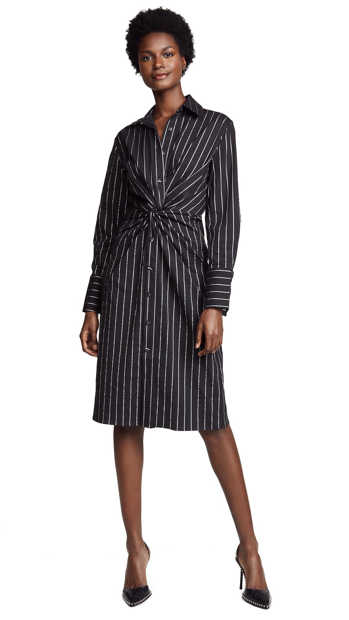 Still Motion Dress in Black Stripe