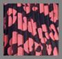 Ярко-розовый с абстрактным цветочным рисунком