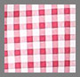 Mini Red Gingham