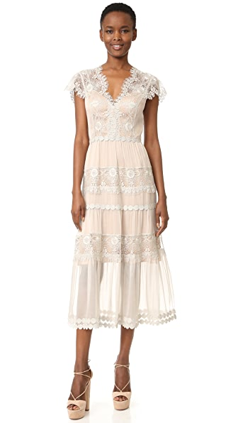 Catherine Deane Gwyneth Silk Chiffon Metallic Lace Dress