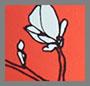 Solace Floral
