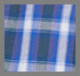Amplified Blue Dickens Plaid