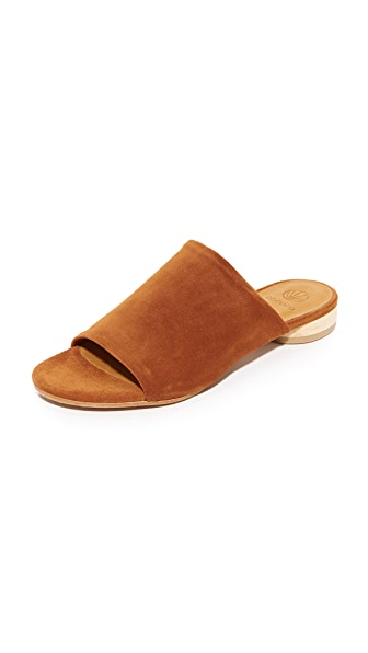 Coclico Shoes Clidro Slides - Brandy