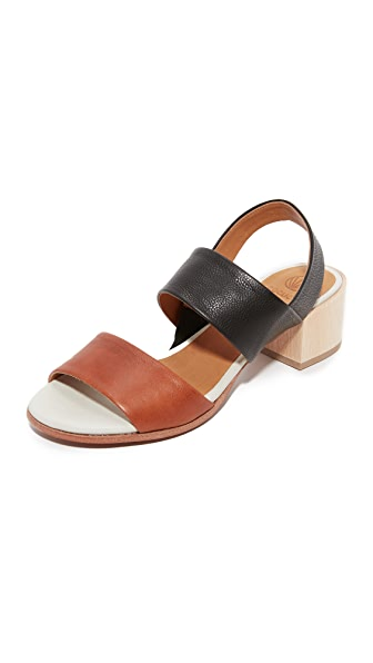 Coclico Shoes Tares City Sandals - York/Black/Cloud